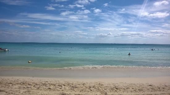 Resort Beach Ocean View Picture Of The Royal Playa Del