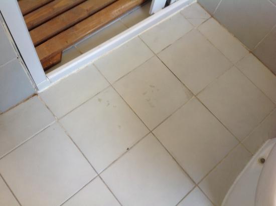 Pedana doccia legno ipè di qualità duraturo negli anni piatto