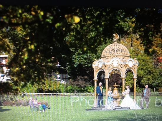 City Park Wedding Events