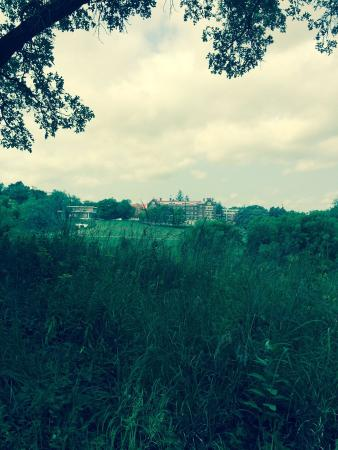 "Cowling Arboretum at Carleton College: Looking at the college from the ""Arb"""