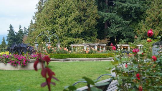 UBC Botanical Garden: ROSE GARDEN   UBC