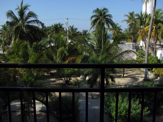Hotel Posada Del Mar: view from my balcony, 2nd floor, ocean view beyond the trees