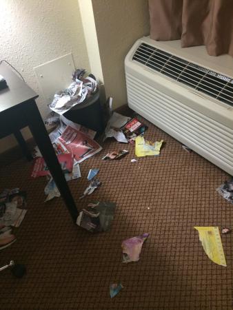 BEST WESTERN PLUS Denver Tech Center Hotel : Misery