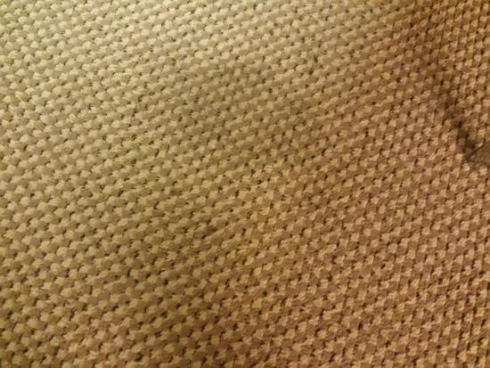 Quality Inn and Suites Bristol: carpet stains