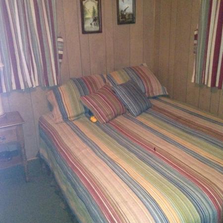 Johnny McNally's Lodge: photo1.jpg