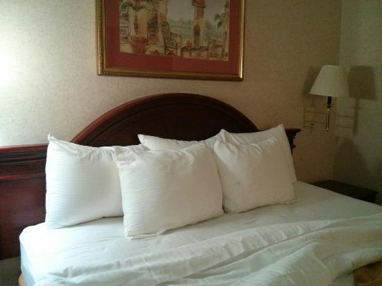 Quality Inn Santa Clara Convention Center: Normal pillows as of September 2015