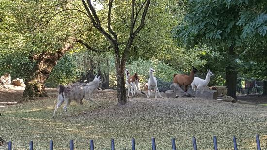 Warsaw Municipal Zoological Garden