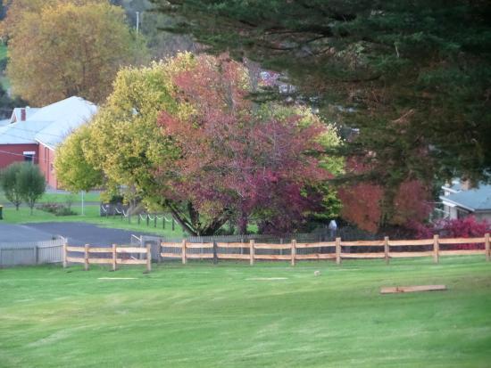 Valentine Hills: Autumn In Loch