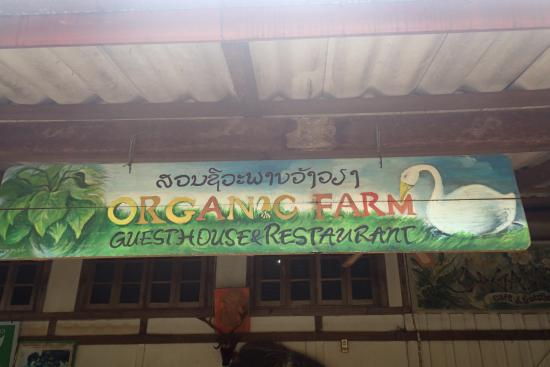 Organic Farm - Cooking Classes