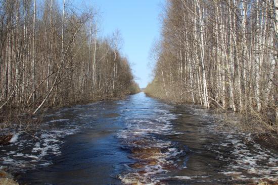 Pskov Oblast, Rosja: Протоки к озеру