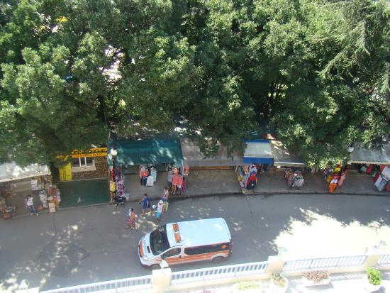 Sofia Hotel: Вид с балкона