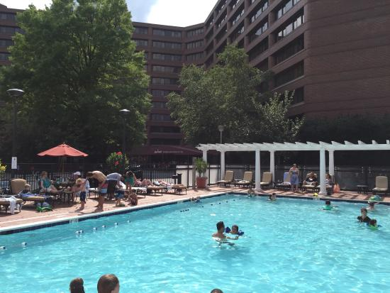 Pool Area Picture Of Washington Marriott Wardman Park Washington Dc Tripadvisor
