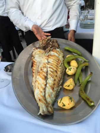 Cengelkoy Iskele Restaurant: Delicious food