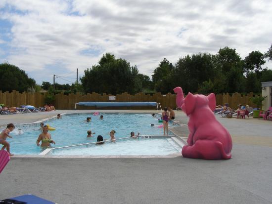 piscine bois joli