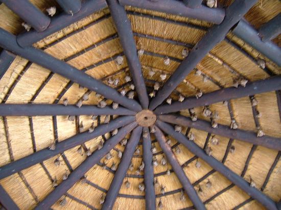 Hluhluwe-Imfolozi Lodge