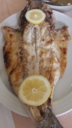Solar do Peixe : peixe