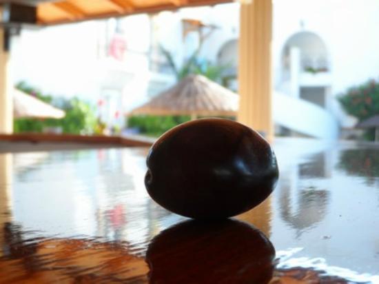 Small World Hotel: My lucky Plum
