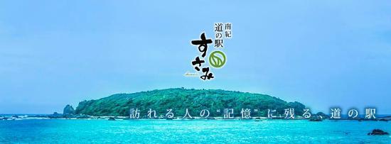 Susami-cho, اليابان: 道の駅すさみのバックに見える江須崎島