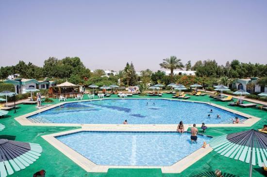 Bild von ghazala beach hotel scharm - Camel dive hotel ...