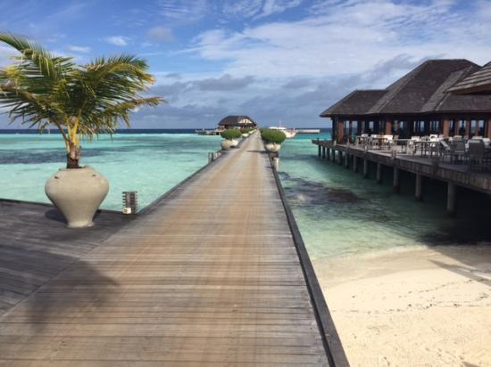 Olhuveli Beach Spa Maldives Direzione Sub
