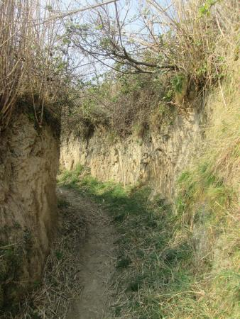Path to Susak lighthouse