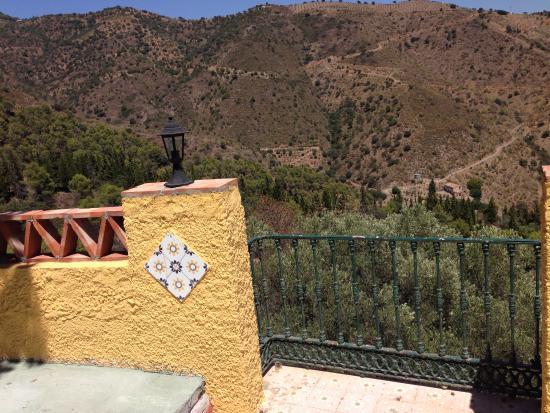 Hotel Cortijo la Reina: view