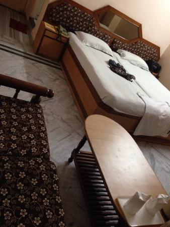 Hotel Surbhi Palace: Super Deluxe Room