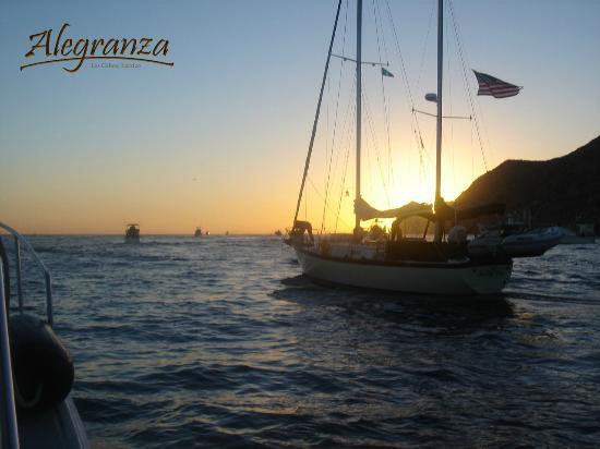 Alegranza: Boat tours