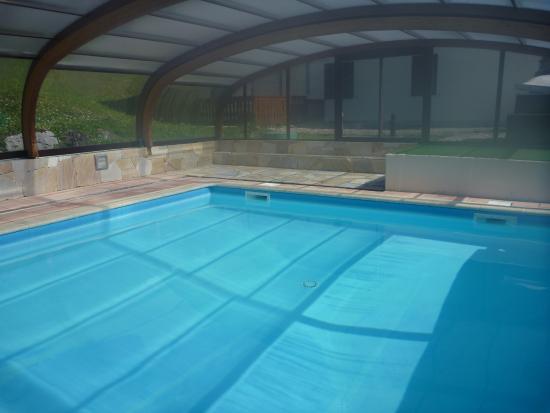 Hotel Le Vermont: La piscine