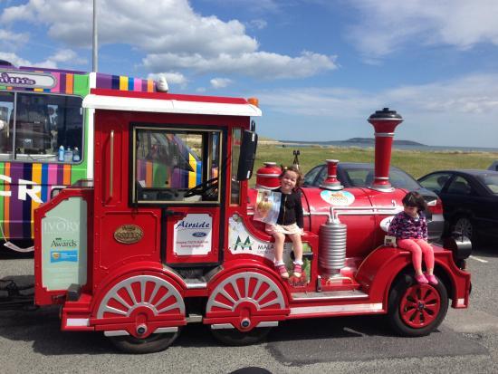 Toots Malahide Road Train: Beautiful Guests big and small!