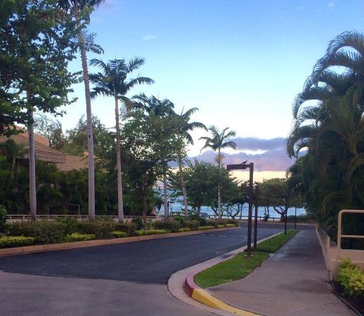 Maui Banyan Condos Photo