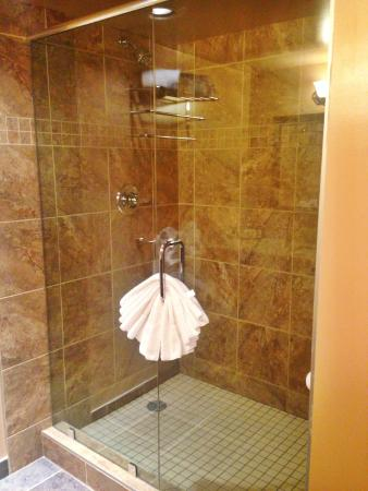 Best Western Airdrie: Walk-in shower