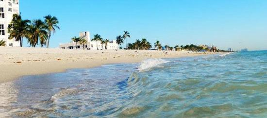 Historic Hollywood Beach Resort  UPDATED 2017 Prices  Hotel