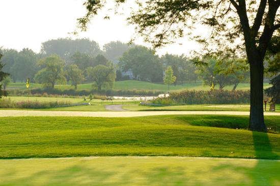 Elk Grove Village, IL: Fox Run GC