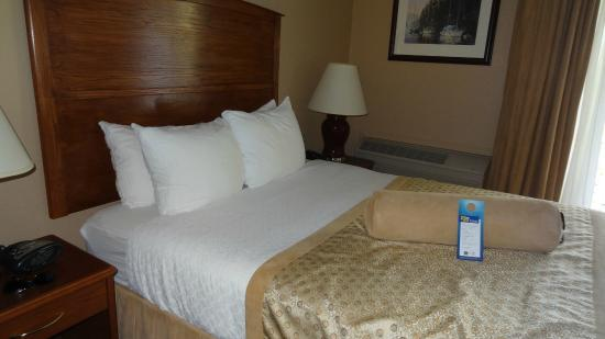 BEST WESTERN The Westerly Hotel & Convention Centre: Comfy bed with plenty of pillows!