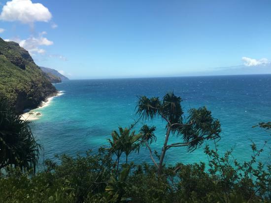 Ollie Tours Kauai - Day Tours