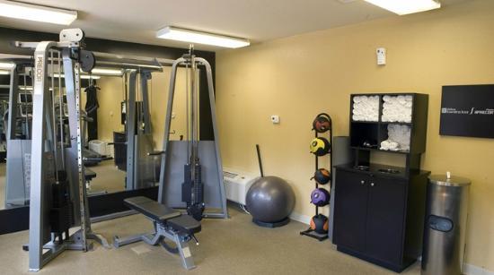 Hilton Garden Inn Phoenix Airport: Fitness Room