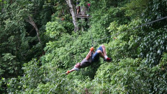Chiclets Tree Canopy Tour: Haning around...
