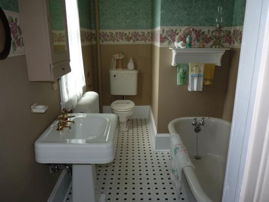 Gagetown, MI: Bathroom in house in 1919
