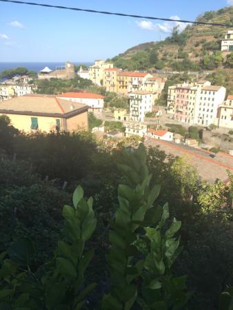 photo1.jpg - Picture of B&B La Terrazza, Riomaggiore - TripAdvisor