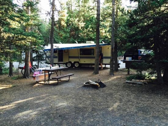 Yellowstone National Park Rv Parks >> Campsite From Lake Picture Of Grant Village Campground