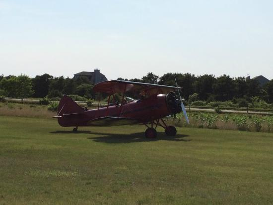 Katama Airfield : In for a landing