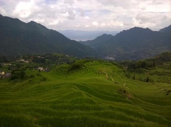 Yunhe County, Kina: Yunhe Rice Terraces, China
