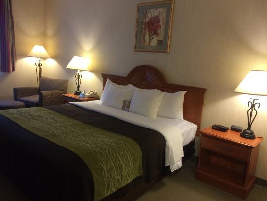 Comfort Inn Ellsworth - Bar Harbor: Bed Area