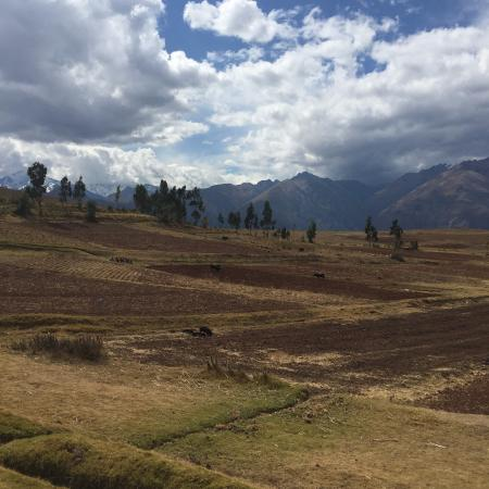 Cusco for You: Sacred Valley Farmland