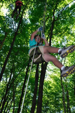 Saukville, Ουισκόνσιν: Tree climbing experience