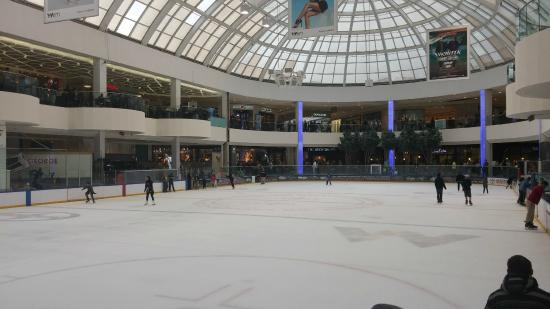Palace Edmonton