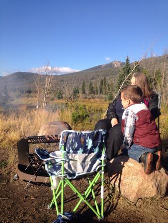 Elk, Moose, Mule Deer right in camp!!