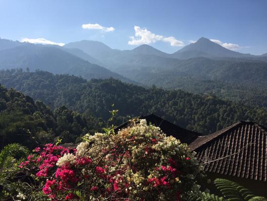 Puri Alam Bali Bungalows: photo1.jpg