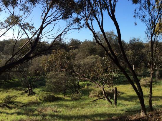 Gwambygine Pool Conservation Reserve